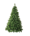 albero_brooklyn