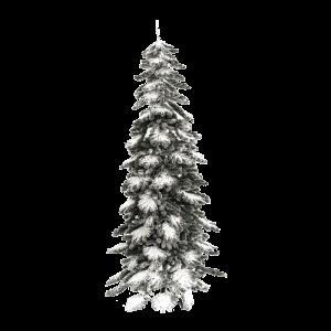 albero_crystal