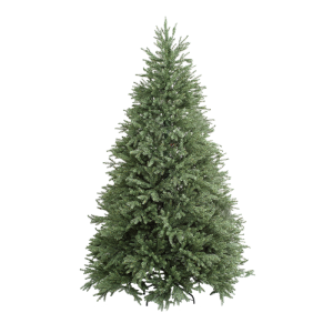albero_lincoln