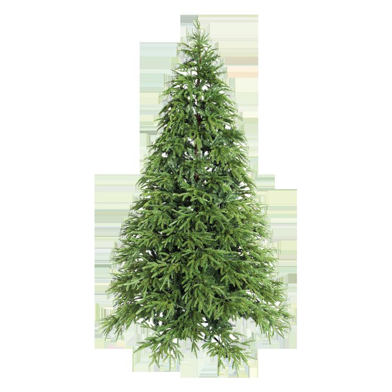 Alberi Di Natale Xone.Tree Brian Xone Srl